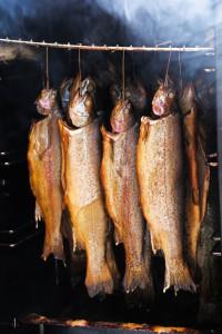fish-4094667_1280