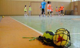 Handball Minis TV Dittigheim e.V.