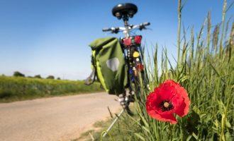 Radfahren beim TV Dittigheim e.V. - Sportgruppe die Radies